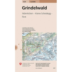Grindelwald  1229  1/25.000